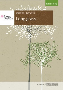 Long grass cover