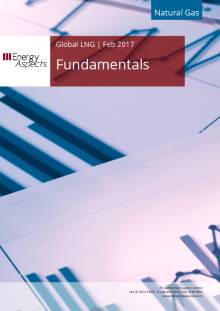 2017-02 Natural Gas - Global LNG Fundamentals cover