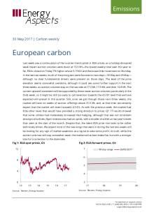 European carbon cover image