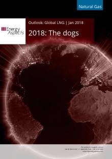 2018-01-30 Natural Gas - Global LNG - 2018: The dogs cover