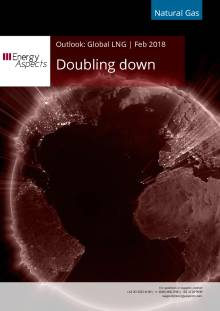 Doubling down cover